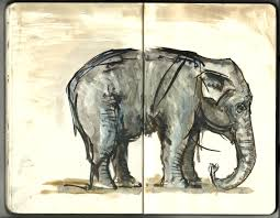 elephant sketch the zoo moleskine the hiking artist project by