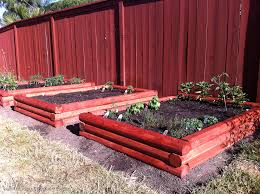 planted raised bed vegetable garden i need a do over what
