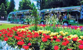 New Zealand Botanical Gardens Christchurch Botanic Gardens Tours Historic Botanic Gardens
