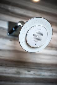 Bluetooth Speakers For Bathroom 260 Best Bathroom Images On Pinterest Bathroom Remodeling