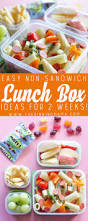 2 weeks of no sandwich lunch box ideas kids will love no repeats
