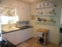 white cabinet shelves u2013 horsetrials org