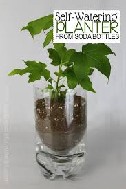 Unique Plant Pots Unique Planters From Soda Bottles Soda Bottles Upcycle And Soda