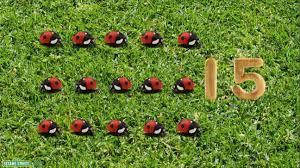 sesame street 15 ladybugs youtube