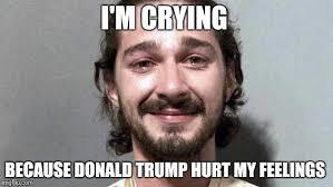Hurt Feelings Meme - i m crying because donald trump hurt my feelings meme