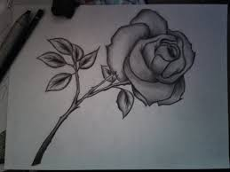 rose simple pencil drawing simple close up drawings drawing and