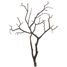 discount wedding supplies real manzanita branches brown 5 sizes real brown