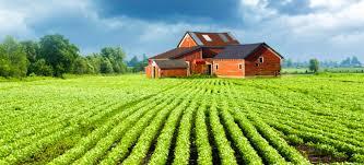 Usda Rural Housing Service Rural Loans In Houston Rural Housing Loan In Texas