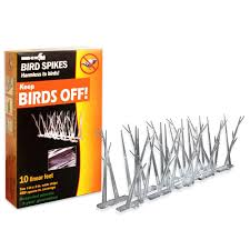 Scare Birds Away From Patio by Bird X 10 Ft Original Plastic Bird Spikes Bird Control Kit Sp 10
