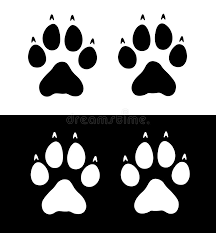 wolf paw prints stock vector illustration of graphics 4385651