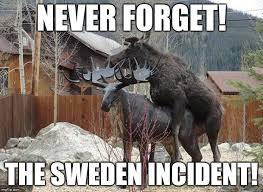 Sweden Meme - the sweden incident imgflip