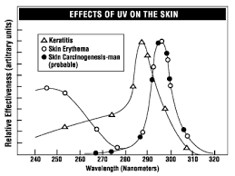 The Amount Of Light And Temperature Are Examples Of Ultraviolet Radiation Osh Answers