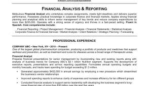 resume it director resume summary amazing resume executive