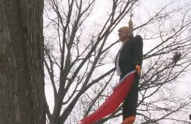 fort wayne resident hangs size doll in a tree from a