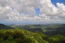 All Island Landscape by Cloud Forest Hill Island Landscape Lush Mountain Free Stock Photos