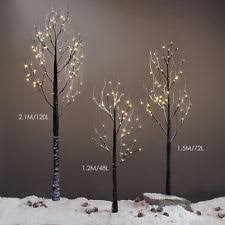Decorative Branches For Vases Uk Decorative Twigs Ebay