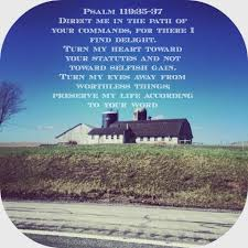 daily dose of scripture psalm 119 35 37 a single christian
