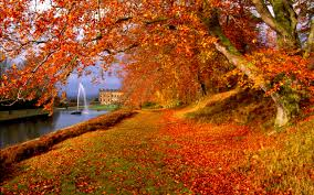free google wallpaper backgrounds free autumn wallpaper backgrounds wallpapersafari