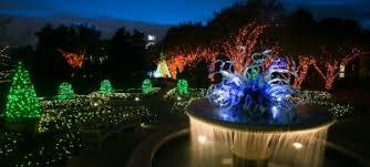 Botanical Gardens Lights Garden Lights Nights At Atlanta Botanical Garden
