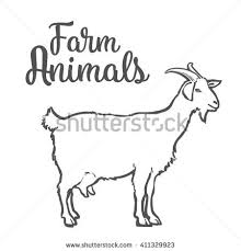 goat stock images royalty free images u0026 vectors shutterstock