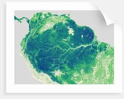 amazon basin forest height map of the amazon basin posters prints by corbis
