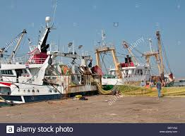 harlingen fishing port with a fish auction function and a home