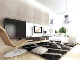 Modern Shag Area Rugs Living Room Shag Rug Onceinalifetimetravel Me