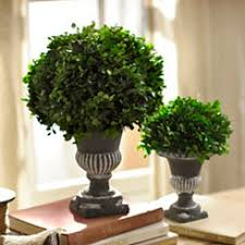 topiaries artificial trees kirklands