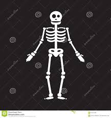 skeleton bones halloween happy halloween skeleton illustration stock illustration image