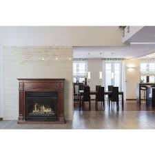 Thermostat For Gas Fireplace by Adjustable Thermostat Gas Fireplaces Fireplaces The Home Depot