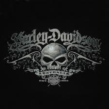 harley davidson 174 southern cross skull shirt leather