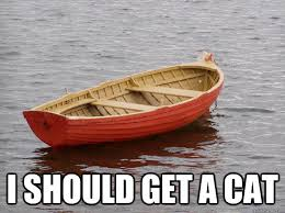 Cat Buy A Boat Meme - i should get a cat lonely boat quickmeme