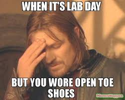 Shoes Meme - when it s lab day but you wore open toe shoes meme frustrated