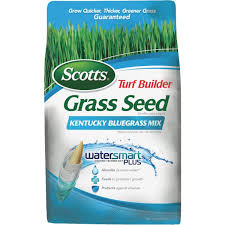 Deep Silo Builder Scotts Turf Builder Kentucky Bluegrass Mix Grass Seed 18266