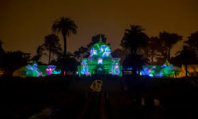 san francisco tree lighting 2017 illumination conservatory of flowers