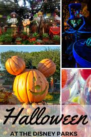 how to halloween at disney traveling mom