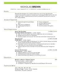 hybrid resume samples impressive design free combination resume template crafty examples