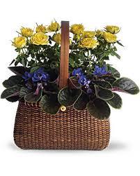 flowers to go garden to go basket teleflora