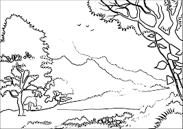 coloring pages of forest coloring home