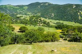 Hill Country Homes For Sale California Ranches For Sale