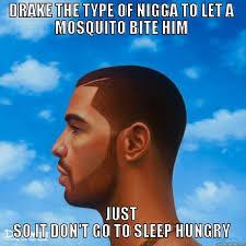 Drake The Type Of Meme - drake the type of nigga to quickmeme