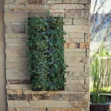 Wall Planters Indoor by 136 Best Vertical Gardening Images On Pinterest Vertical