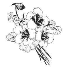 beautiful flower designs to draw easy drawing of sketch