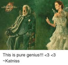 catching fire this is pure genius 3 3 katniss fire meme on