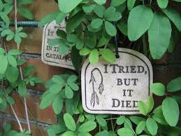 10 funny garden signs home u0026 garden design ideas articles