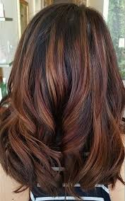 mahoganey hair with highlights best 25 mahogany highlights ideas on pinterest dark brown