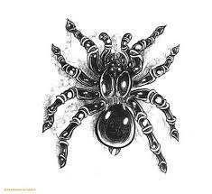 black and white original design spider tattoo tattoos photos