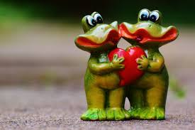 Decorative Frogs Free Images Animal Cute Love Heart Green Partner Frog