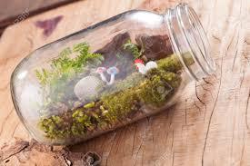 a terrarium garden scene in a clear bottle with moss pebble