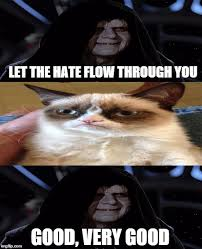 Let The Hate Flow Through You Meme - dark side kitty imgflip